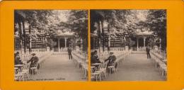 Photo Stereo Allier Vichy Auvergne Jardins De L'eden - Photos Stéréoscopiques