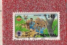 SENEGAL  -- LE  SCOUTISME  SENEGALAIS   --   **  145  F. **  --  POSTE  1990  --  BEG - Senegal (1960-...)