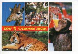 Animal  Sauvage / Zoo De La Cabosse à Jurques 14 - Animaux & Faune