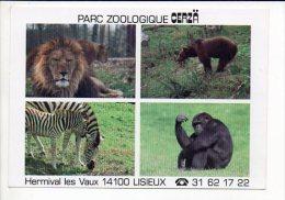Animal  Sauvage / Zoo Ou Parc Zoologique De Cerza Hermival Les Vaux 14 - Animaux & Faune