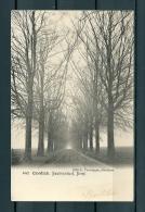 CONTICH: Bautersemhof Dreef, gelopen postkaart 1904 (Uitg Vertongen) (GA19523)