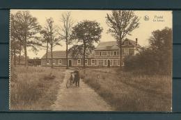 POSTEL: De School, Niet Gelopen Postkaart (Uitg Van Eynde) (GA19632) - Mol