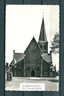 RYCKEVORSEL: St Jozefkerk, Niet Gelopen Postkaart (Uitg Meeuwezen) (GA19831) - Rijkevorsel
