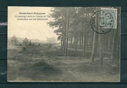 BRASSCHAET: Un Paysage Dans Le Champ De Tir, Gelopen Postkaart 1921 (GA20546) - Brasschaat