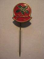 Pin Jamin (GA01033) - Noël