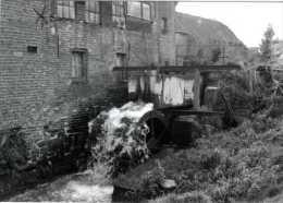 OTTERGEM Bij Erpe-Mere (O.Vl.) - Molen/moulin - Historische Opname (1992) Van ´de Watermeulen´ Nog In Vol Bedrijf - Erpe-Mere