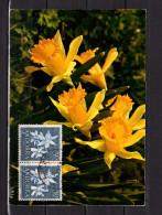 """ANDORRE ESP 1966 : Carte Maximum """" FLEURS : JONQUILES """" N° YT 61. Parfait état. CM - Plants"""