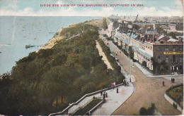 PC Southend-on-Sea - Birds Eye View Of The Shrubbery - 1909  (9529) - Southend, Westcliff & Leigh