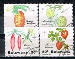 BOTSWANA /Oblitérés/Used /1985 - Fruits De Végétaux Indigénes - Botswana (1966-...)
