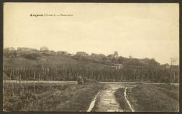 ASQUES Rare Panorama (Appert) Gironde (33) - France