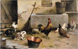 [DC5775] CARTOLINA - AIA - CONIGLI E GALLINE - NV - Old Postcar - Fattorie