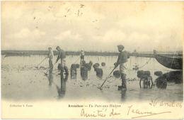 33/ Belle CPA A 1900 - Arcachon - Un Parc Aux Huitres - Arcachon