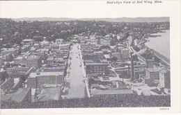 RED WING, Minnesota, 1900-1910�s; Bird's-Eye View of Red Wing