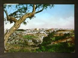 BASILICATA -POTENZA -GENZANO DI LUCANIA -F.G. LOTTO N 408