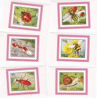 Sharjah, 1972, Insects, Inclduding Bee,Ladybird, Snail Etc... ^ De Luxe Souvenir Sheets, Limited Printing- Topical Set - Honeybees