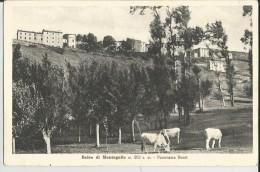 BALZO DI MONTEGALLO (ASCOLI PICENO) PANORAMA OVEST -FP - Ascoli Piceno