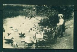 SCOTLAND  -  Rouken Glen  Feeding The Swans  Unused Postcard As Scan (torn Corner) - Renfrewshire
