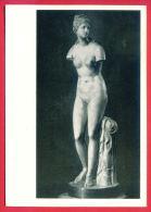 155341 / Saint Petersburg - State Hermitage Museum - The Venus Tauride Or Venus Of Tauris NUDE WOMAN Russia Russie - Museum