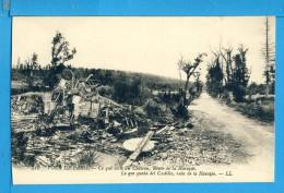 CP, 51, FOUR DE PARIS, Ce Qui Reste Du Château Route De La Harazée, Vierge - France