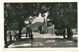 CPSM ALGERIE AIN-TEMOUCHENT LE BOULEVARD NATIONAL BELLE ANIMATION - Autres Villes