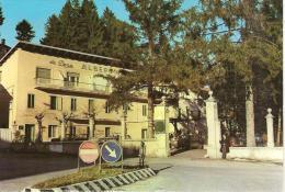 SEDICO (BELLUNO) - Albergo VENEZIA - Belluno