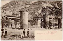 Sisteron - Cathédrale Et Vieux Remparts ( édition N°10 Beckmann ) - Sisteron