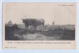 """"""" Le Velay Illustré """" - Le Puy - LE SEMEUR, TABLEAU Exposé Au Musée Crozatier, ..... Du Laboureur Vellave - Landwirtschaftl. Anbau"""