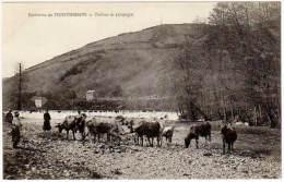 Environs De Montbrison - Tableau De Campagne (vaches) - Montbrison