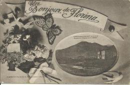 UN BONJOUR DE FLORINA (Campagne D'Orient 14-18, Entrée De L'Hopital De Florina) - Serbia