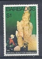 140016328  BARBADOS   YVERT  Nº  431  **/MNH - Barbados (1966-...)