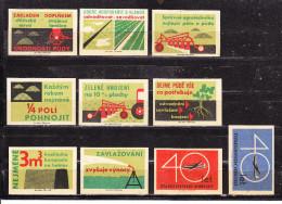 10 Verschiedene Tschechische Etiketten Ab Ca. 1950 (61129) - Zündholzschachteletiketten