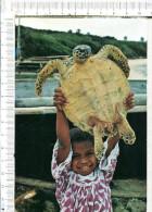 SAINT MAURICE  -  Retour De Pêche à La Tortue Sur La Plage  - Enfant - Nouvelle Calédonie