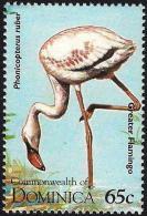 Dominica 1995 Bird Vogel Oiseau - American Flamingo - Flamingo
