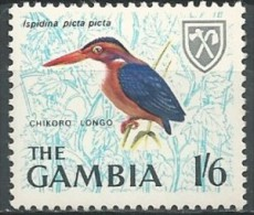 Gambia: African Pygmy Kingfisher (Ispidina Picta) - Autres