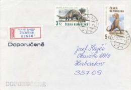 Czech Rep. / Occasional R- Label (1994/01) Straznice: 67th Congress Of The SAT (World Esperanto Association) (I7867) - Esperanto