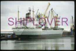 diapositive authentique cargo IBN SHUHAID (r�f. D04694) - ship 35 mm photo slide - bateau/ship/schiff