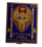 """Distintivo Badge con Fasci """"Studium Urbis"""" Universit� La Sapienza 1935 Anno XIV con smalti #C287"""
