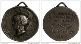 Medaglia Medal Collegio Militare di Roma Mak P 100 Argento #MD3659