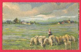 [DC5782] CARTOLINA - GREGGE DI PECORE CON PASTORE - SERIE ARTISTICA ACQUARELLO - Viaggiata 1922 - Old Postcar - Allevamenti