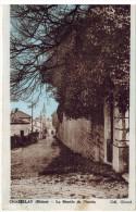 CPA CHASSELAY (69): La Montée Du Plantin - Autres Communes