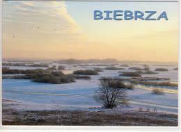 POLAND, POLEN - BIEBRZA,   nice stamp