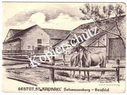 Gestüt St. Rapael, Schwanenberg - Genfeld  (z1327) - Erkelenz