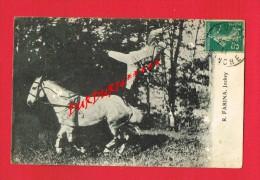 R. FARINA Jockey ( Cheval...genre Cirque...acrobate...) - Cirque