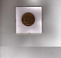 M�daille de concours de tir  - 159e R.I.A.  - Pistolet  - Graveur : Alph�e Dubois  - Bronze ??