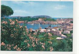 ISCHIA Porto D'Ischia Panorama - Italia