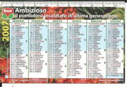 CAL612 - CALENDARIETTO 2007 - FOUR - POMODORO CUORBENGA - AMBIZIOSO