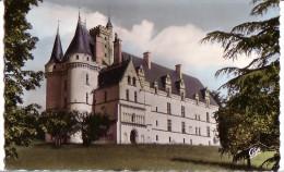 VOUNEUIL-sur-VIENNE: Le Château De CHITRE - Vouneuil Sur Vienne
