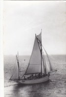 """PHOTO 14.2/9.2.CM : VOILIER ECOLE  """" LE MUTIN """" EN 1927. B.ETAT. CLICHE E.C.P.A."""