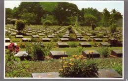 A View Of The Grave Yard Of European Prisonor Of Ww2  Kanjanaburi - Thailand