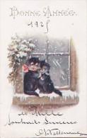 Belle CPA   Bonne ANNEE 1925  CHATS  NOIRS Tendresse Devant La NEIGE - Cats